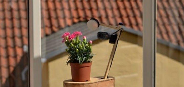 planta selfie arduino 720x340 - Hazte un selfie con esta planta controlada con Arduino