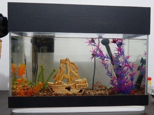 Controla la iluminación de tu acuario con arduino y
