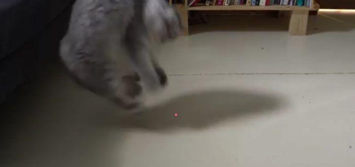 gato laser 720x340 - Juega con tu gato con este laser controlado con Arduino