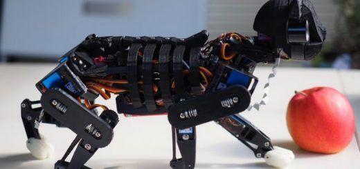 gato robot 520x245 - Opencat, un gato robot para enseñar a los niños robótica