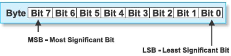 bit y bytes