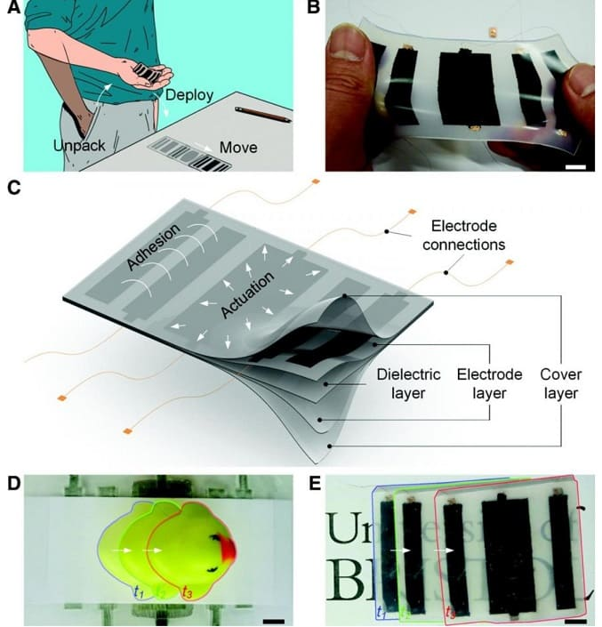 electroskin funcioamiento - El robot ElectroSkin de bolsillo se arrastra y se adhiere a las paredes