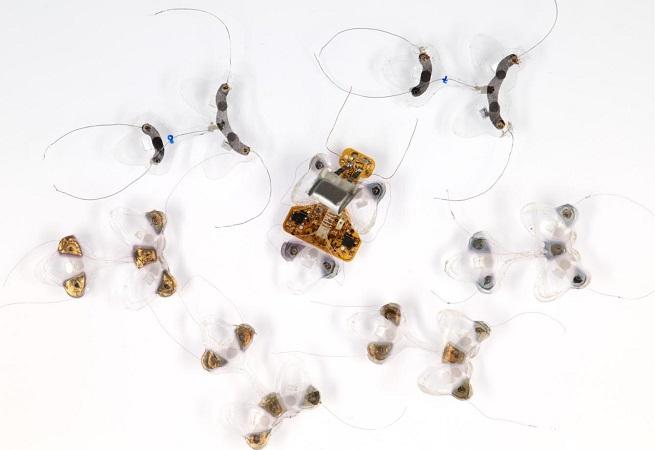 minirobot insecto - El pequeño y resistente robot que no se rinde y sigue caminando.