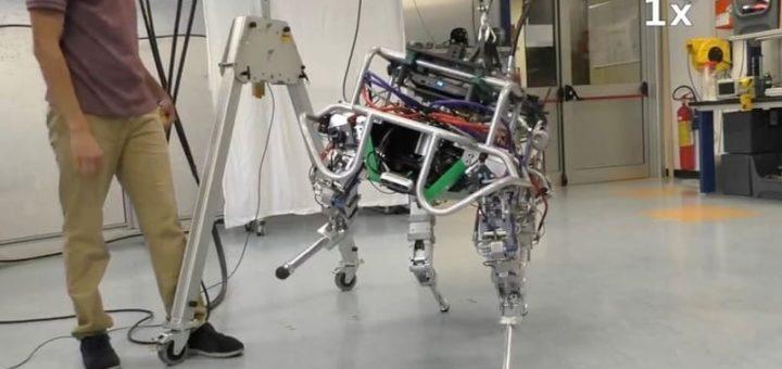 robot cuadrupedo italiano