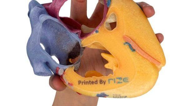 RIZE lanza el filamento compuesto de fibra de vidrio RIZIUM
