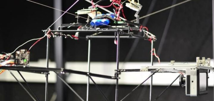 robot para seguir insectos