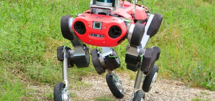 robot bípedo