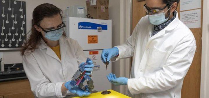"""Científicos crean """"blobs"""" de robots que pululan juntos para protegerse"""