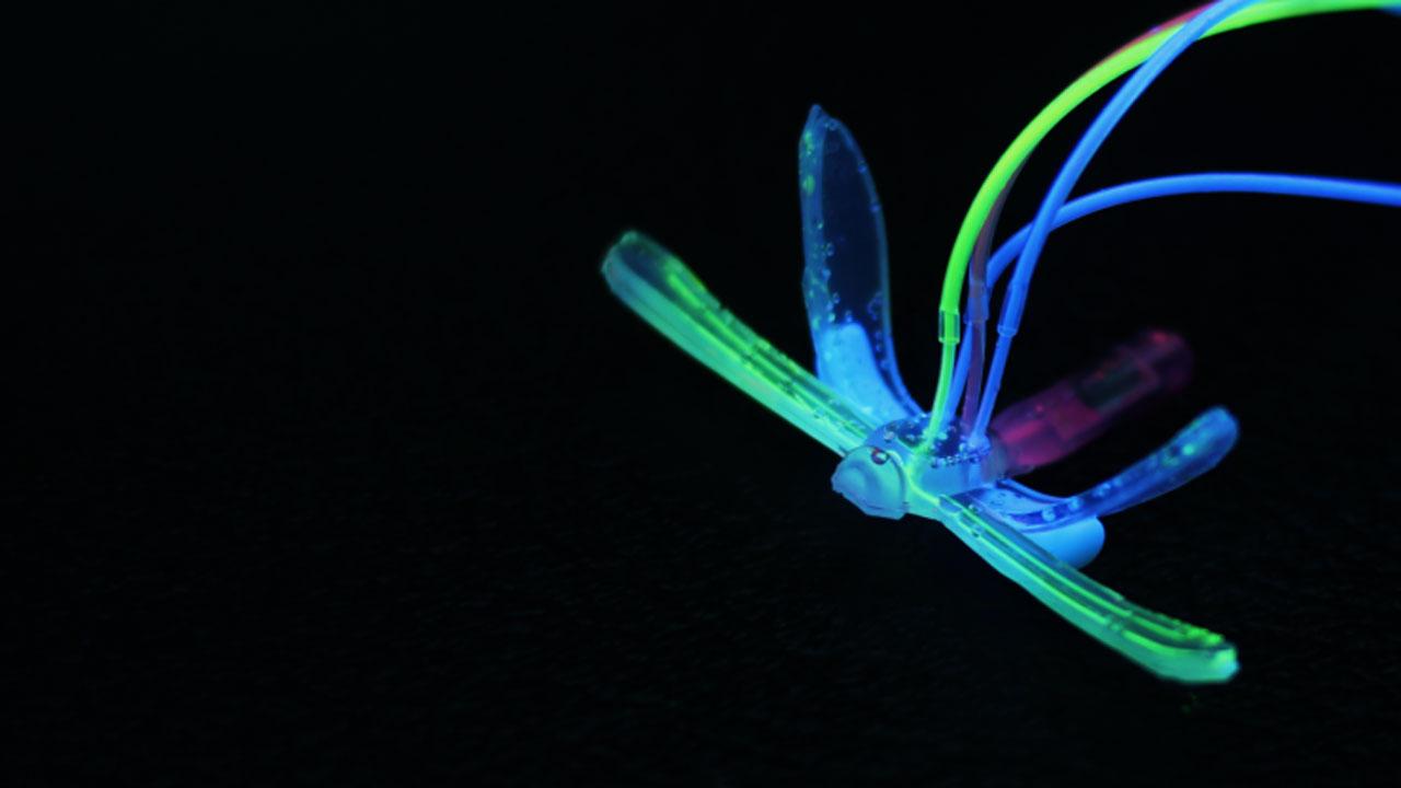 libelula robotica suave detecta condiciones ambien - DraBot, Una libélula robótica detecta las condiciones ambientales en el agua