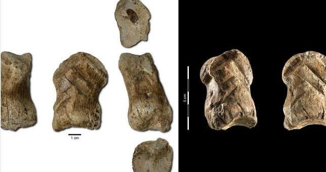 neandertal impresion 3d