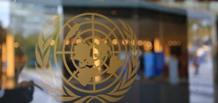 Visión general del logotipo de las Naciones Unidas.