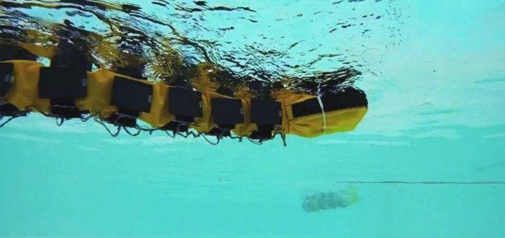La EPFL crea un robot nadador parecido a una anguila llamado AgnathaX