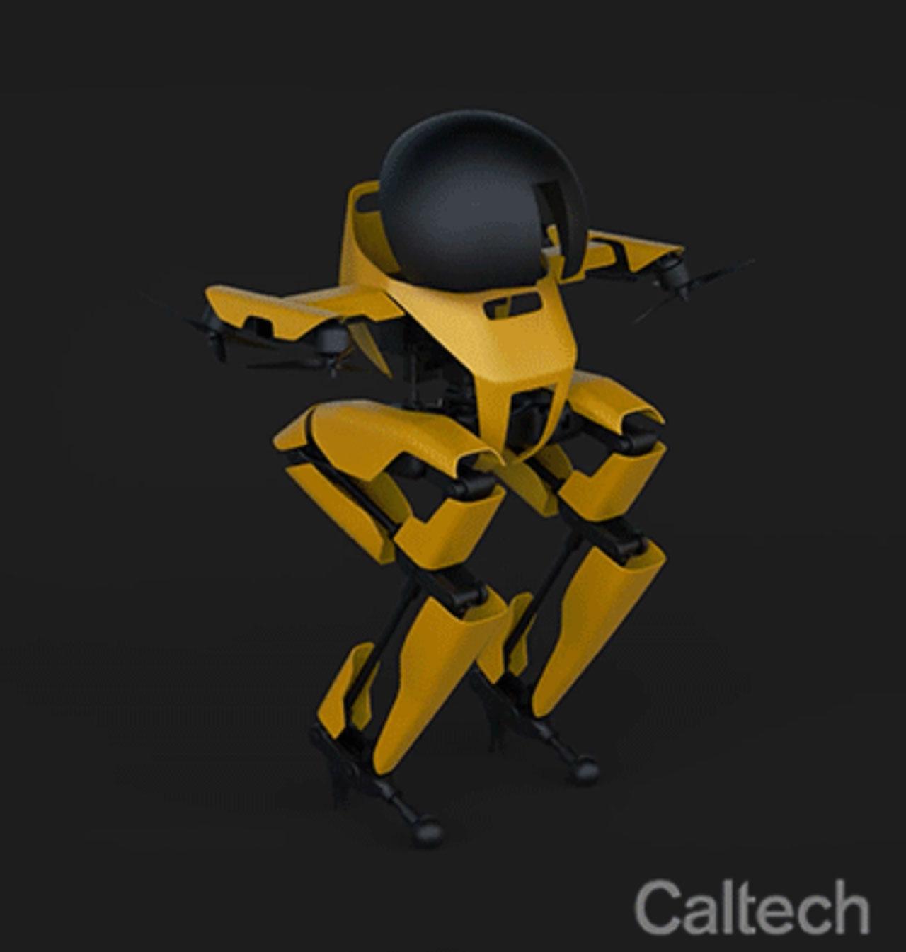 word image - El robot bípedo LEONARDO, de Caltech, es capaz de patinar y mucho más